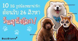 20200824-_B_-dog-day-blog
